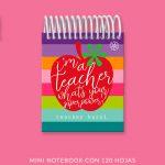Super Teacher Mini Notebook
