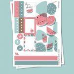 Watermelon  Stickers para Planner