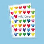 Color hearts Pastas intercambiables